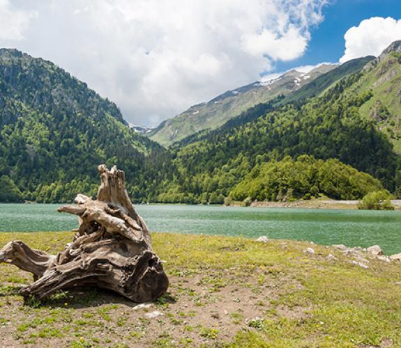 Camping Pont Lauguere Pyrénées Altantiques Laruns